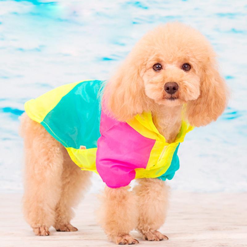 Летняя одежда для животных